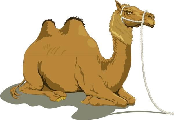Camel Caravan svg #1, Download drawings