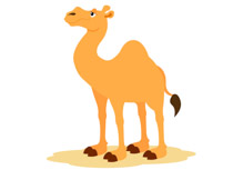 Camel clipart #2, Download drawings