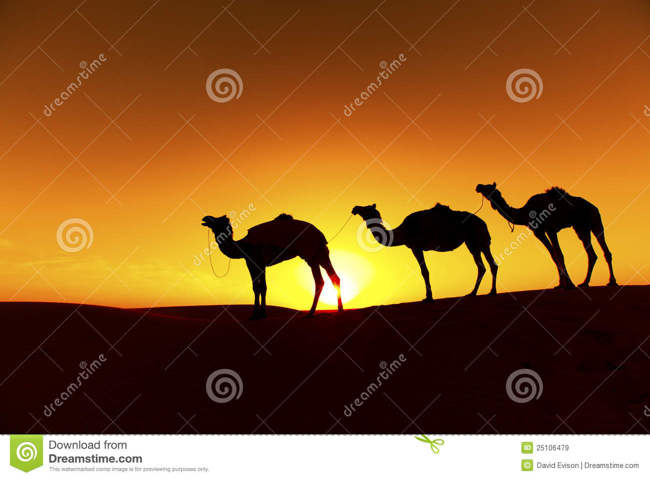 Camel Train clipart #9, Download drawings