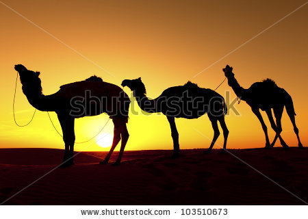 Camel Train clipart #19, Download drawings