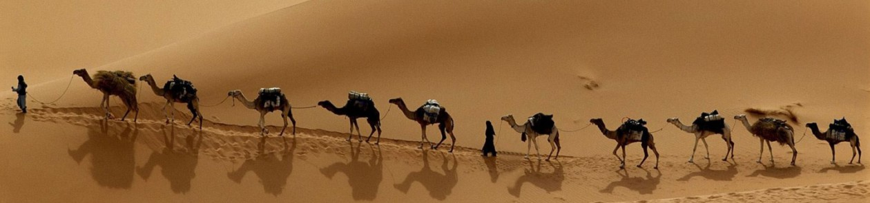 Camel Train clipart #18, Download drawings