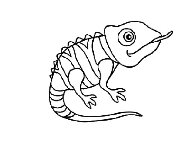 Chameleon coloring #4, Download drawings