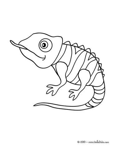 Chameleon coloring #20, Download drawings