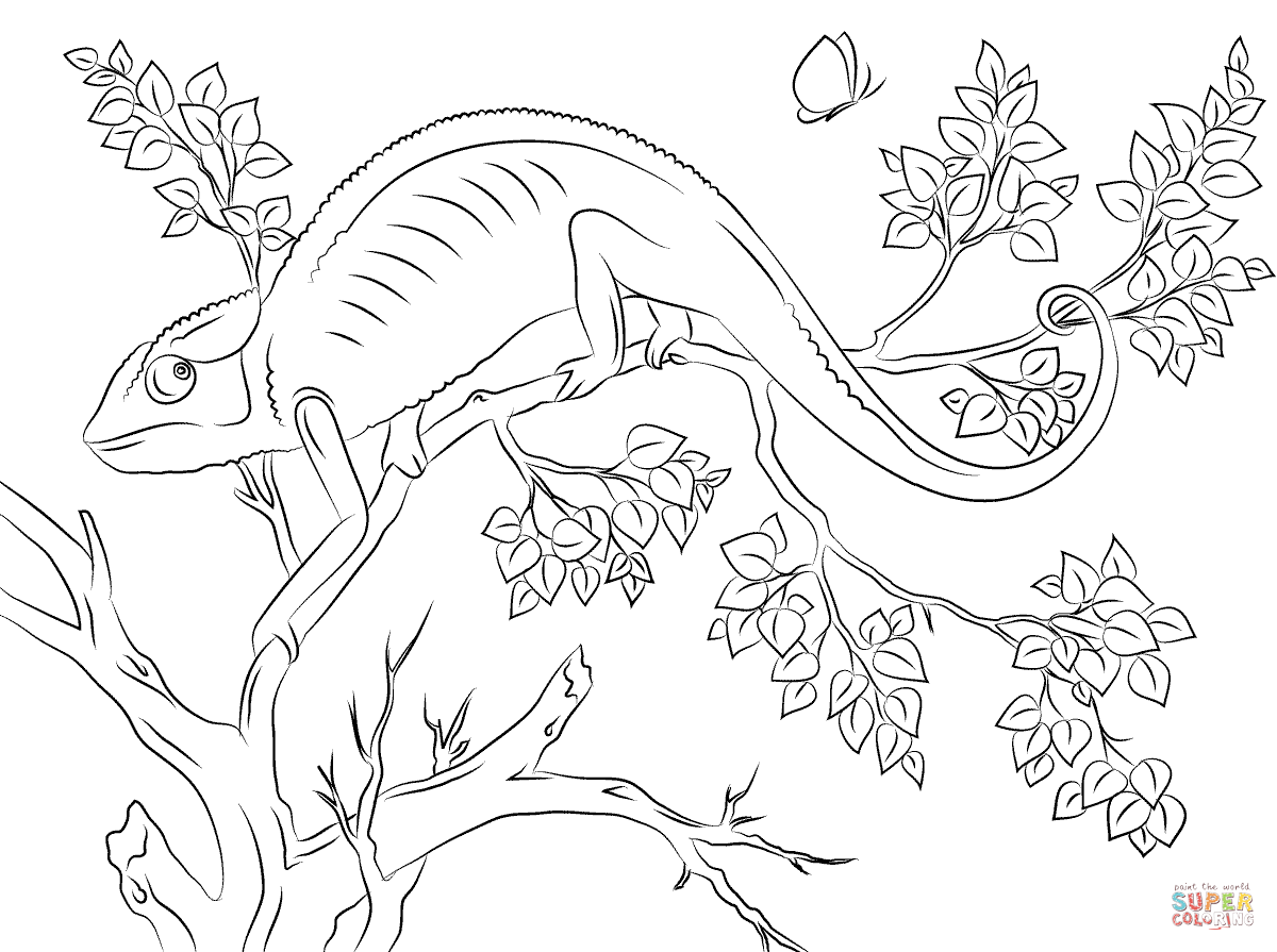 Chameleon coloring #10, Download drawings
