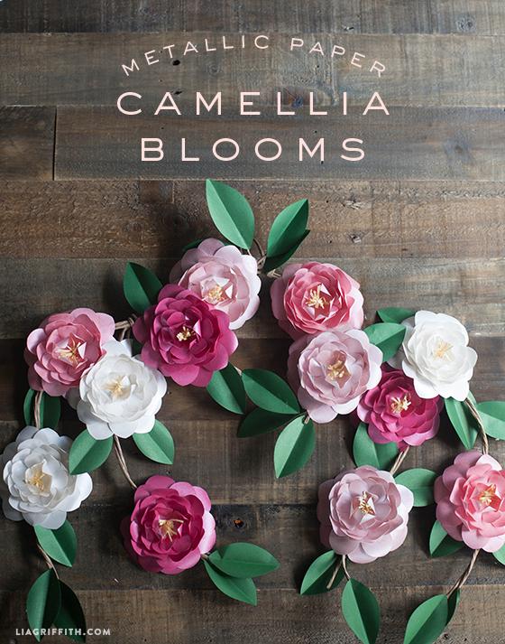 download camellia svg for free