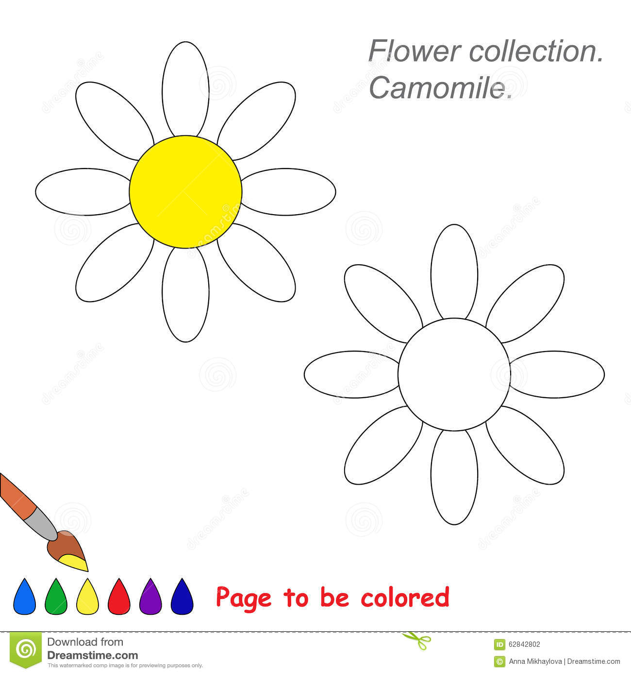 Camomile coloring #17, Download drawings