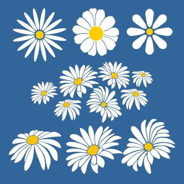 Daisy svg #20, Download drawings