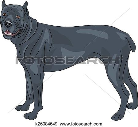 Cane Corso clipart #3, Download drawings
