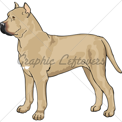 Cane Corso clipart #18, Download drawings