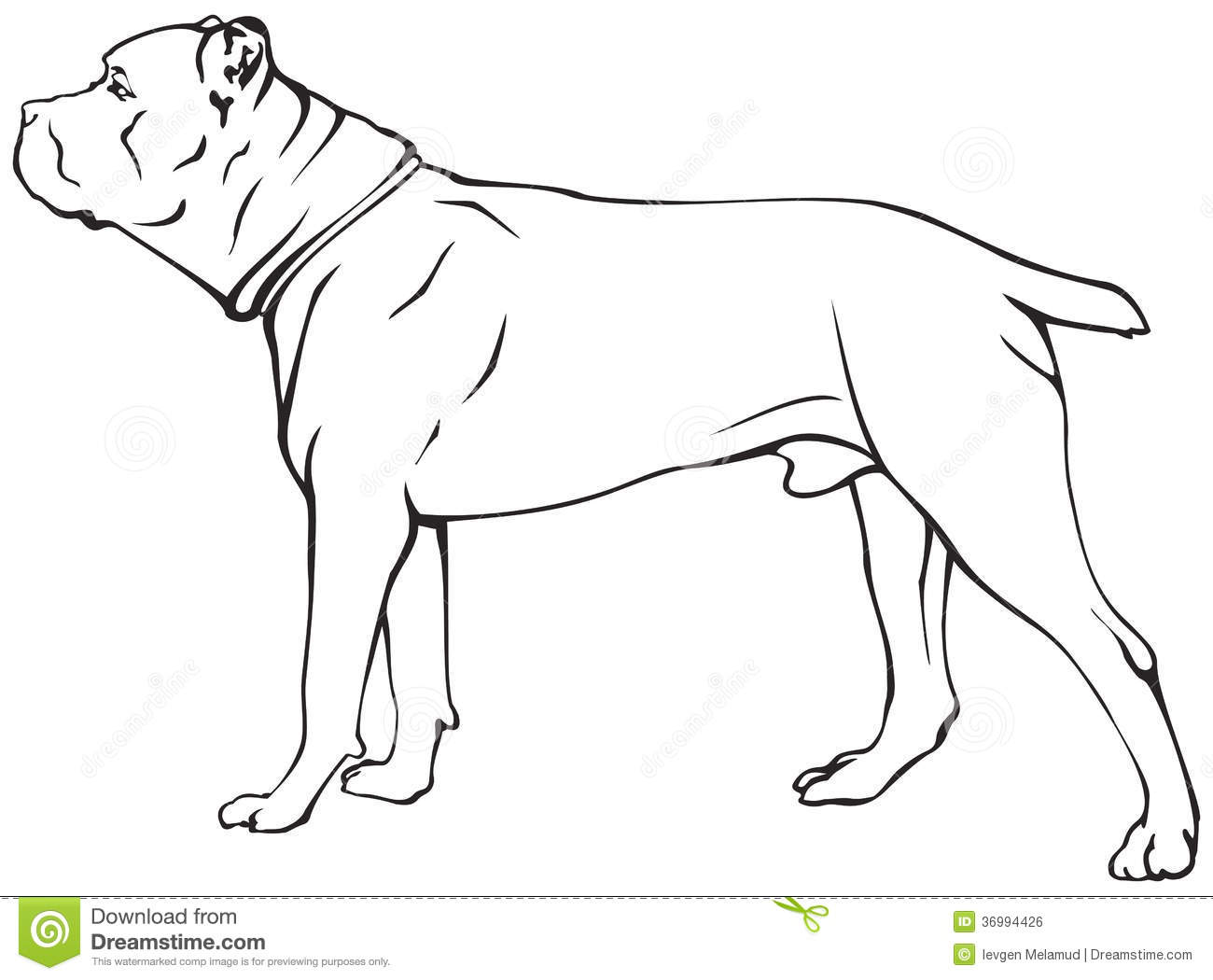 Cane Corso clipart #2, Download drawings