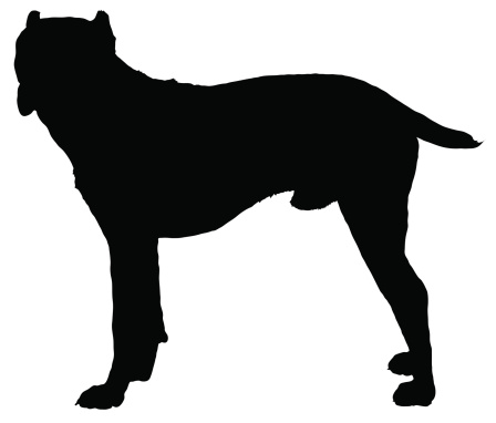 Cane Corso clipart #1, Download drawings