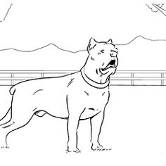 Cane Corso coloring #20, Download drawings