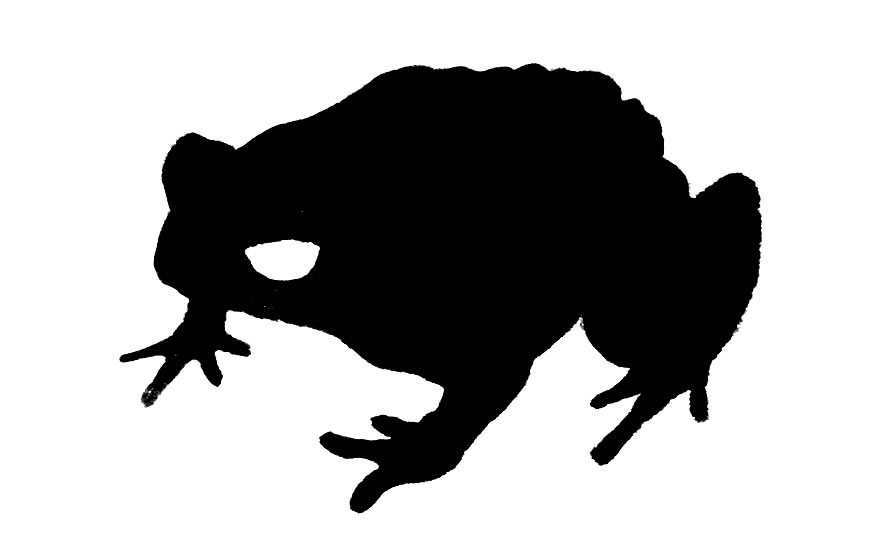Cane Toad clipart #10, Download drawings