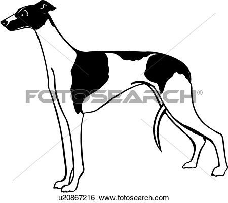 Canine clipart #6, Download drawings