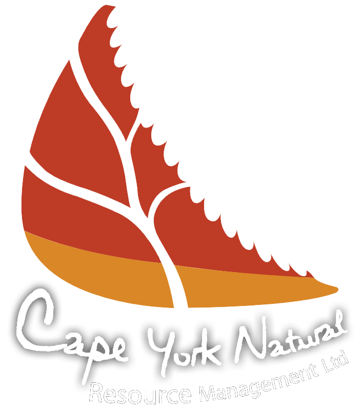 Cape York clipart #11, Download drawings
