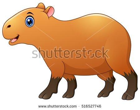Capybara clipart #8, Download drawings