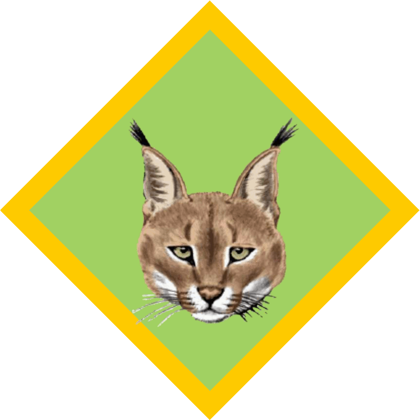 Caracal clipart #20, Download drawings
