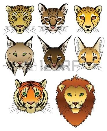 Caracal clipart #17, Download drawings
