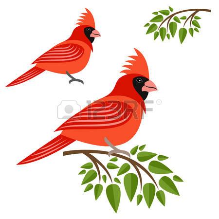 Cardinal clipart #13, Download drawings