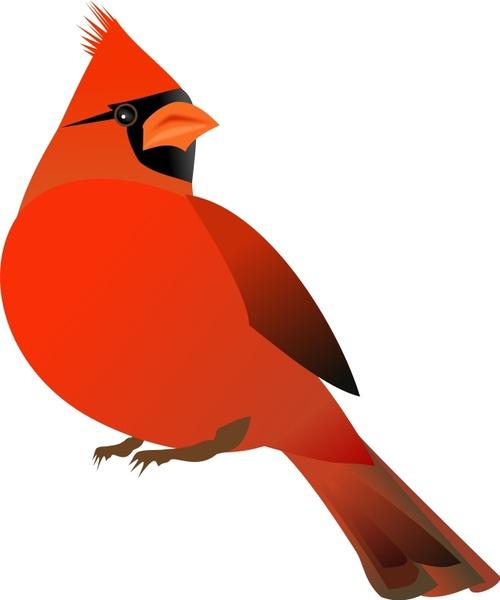Cardinal svg #9, Download drawings