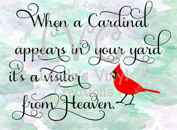 Cardinal svg #3, Download drawings