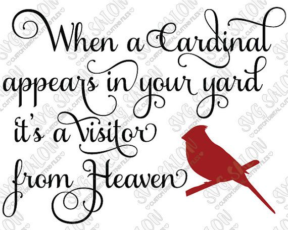 Cardinal svg #259, Download drawings