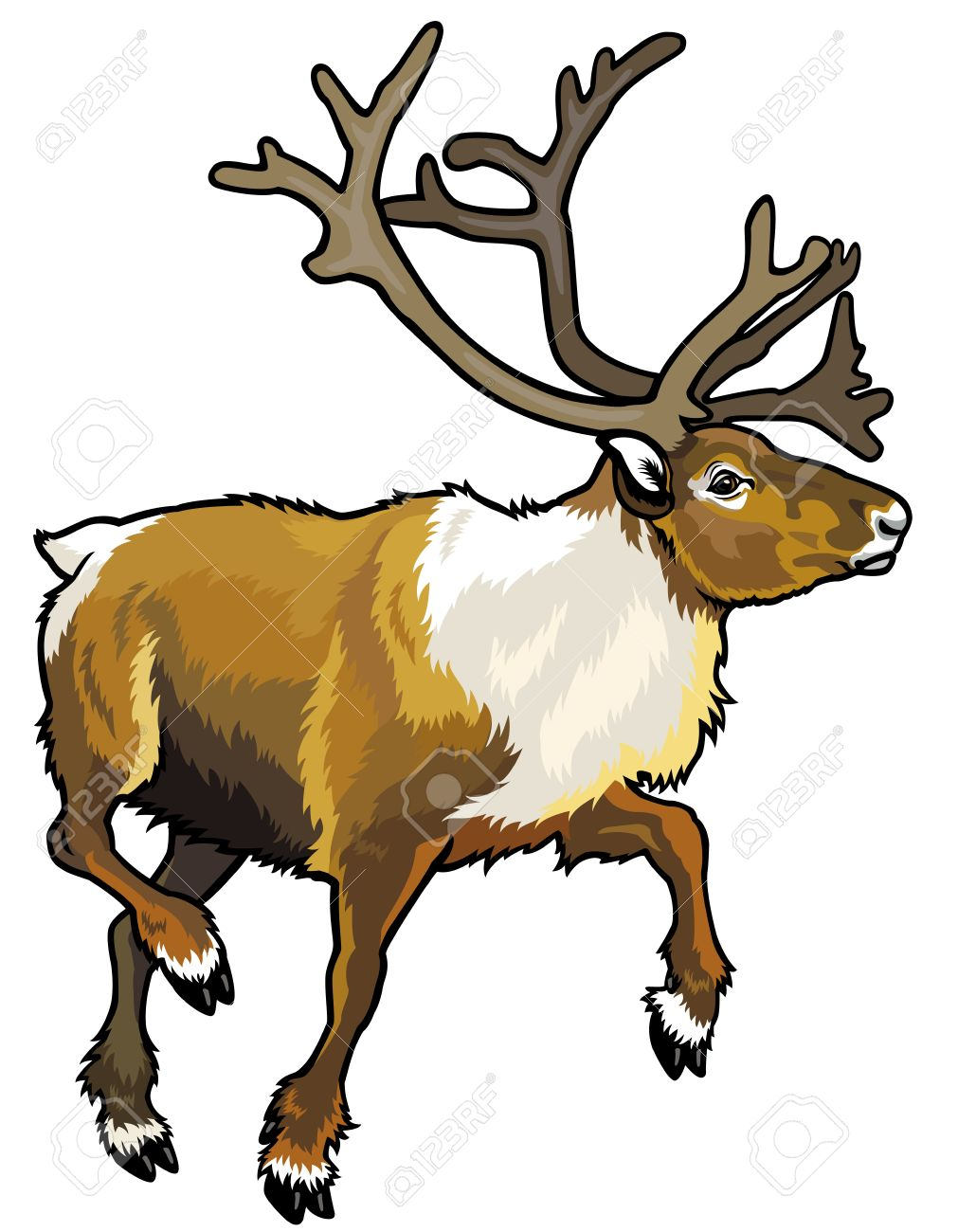 Caribou clipart #10, Download drawings