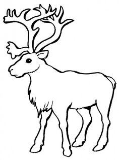 Caribou clipart #9, Download drawings