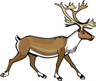 Caribou clipart #20, Download drawings