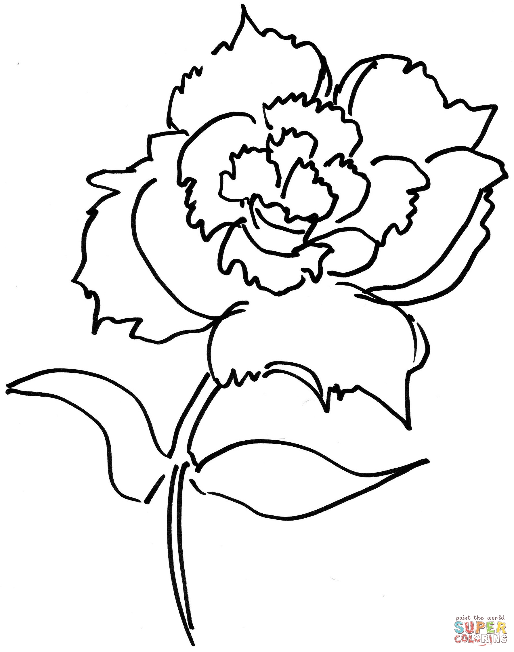 Dianthus coloring #3, Download drawings