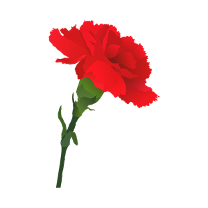 Carnation svg #20, Download drawings