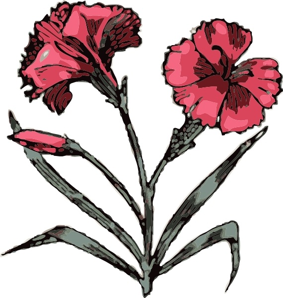 Carnation svg #18, Download drawings
