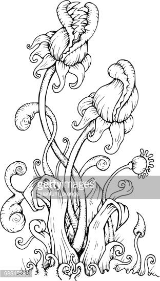carnivorous plants coloring pages | Carnivorous Plant coloring, Download Carnivorous Plant ...