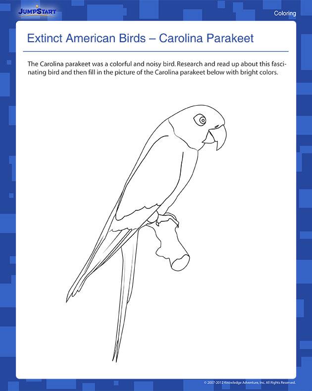 Carolina Parakeet coloring #6, Download drawings