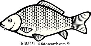 Carp clipart #15, Download drawings
