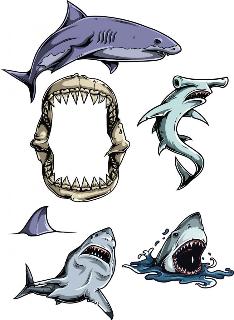Carpenter Shark clipart #2, Download drawings