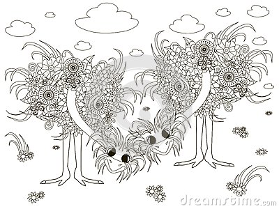cassowary coloring pages - photo#21