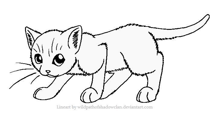 Cat coloring #16, Download drawings