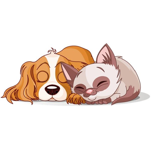 Cat & Dog clipart #15, Download drawings