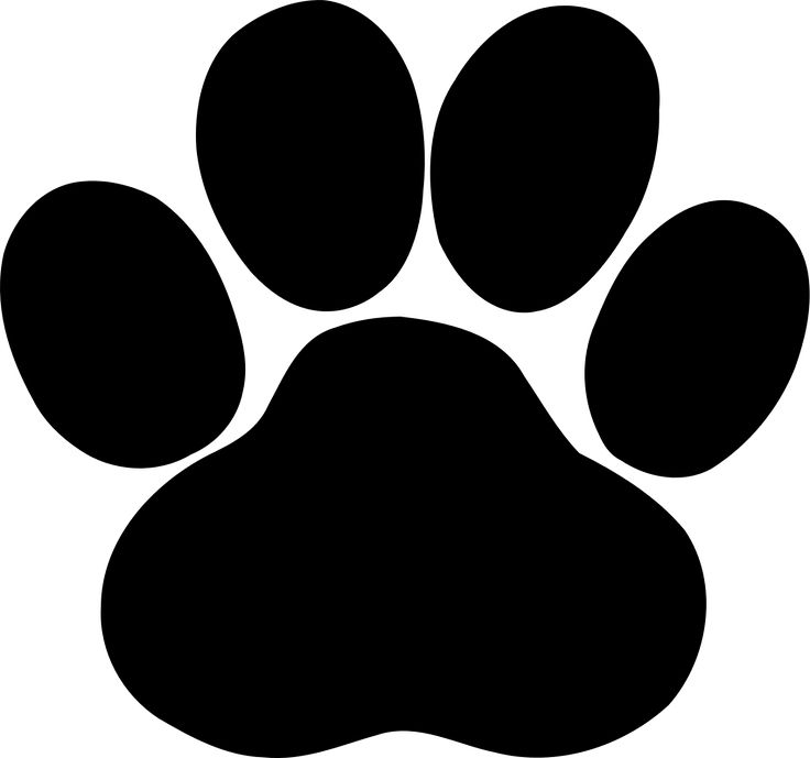 Cat & Dog svg #16, Download drawings