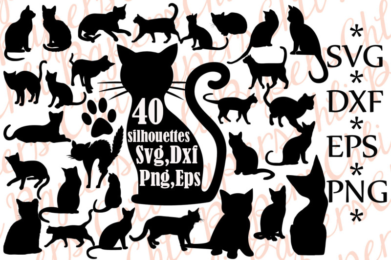 cat svg free #239, Download drawings