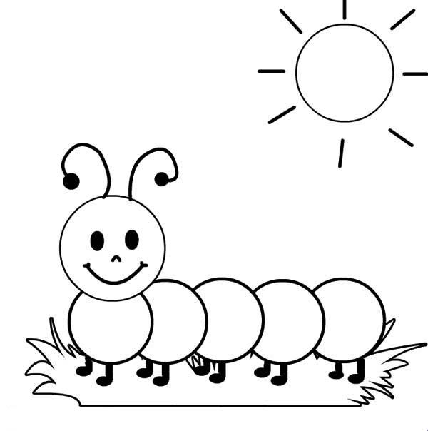 Caterpillar coloring #7, Download drawings