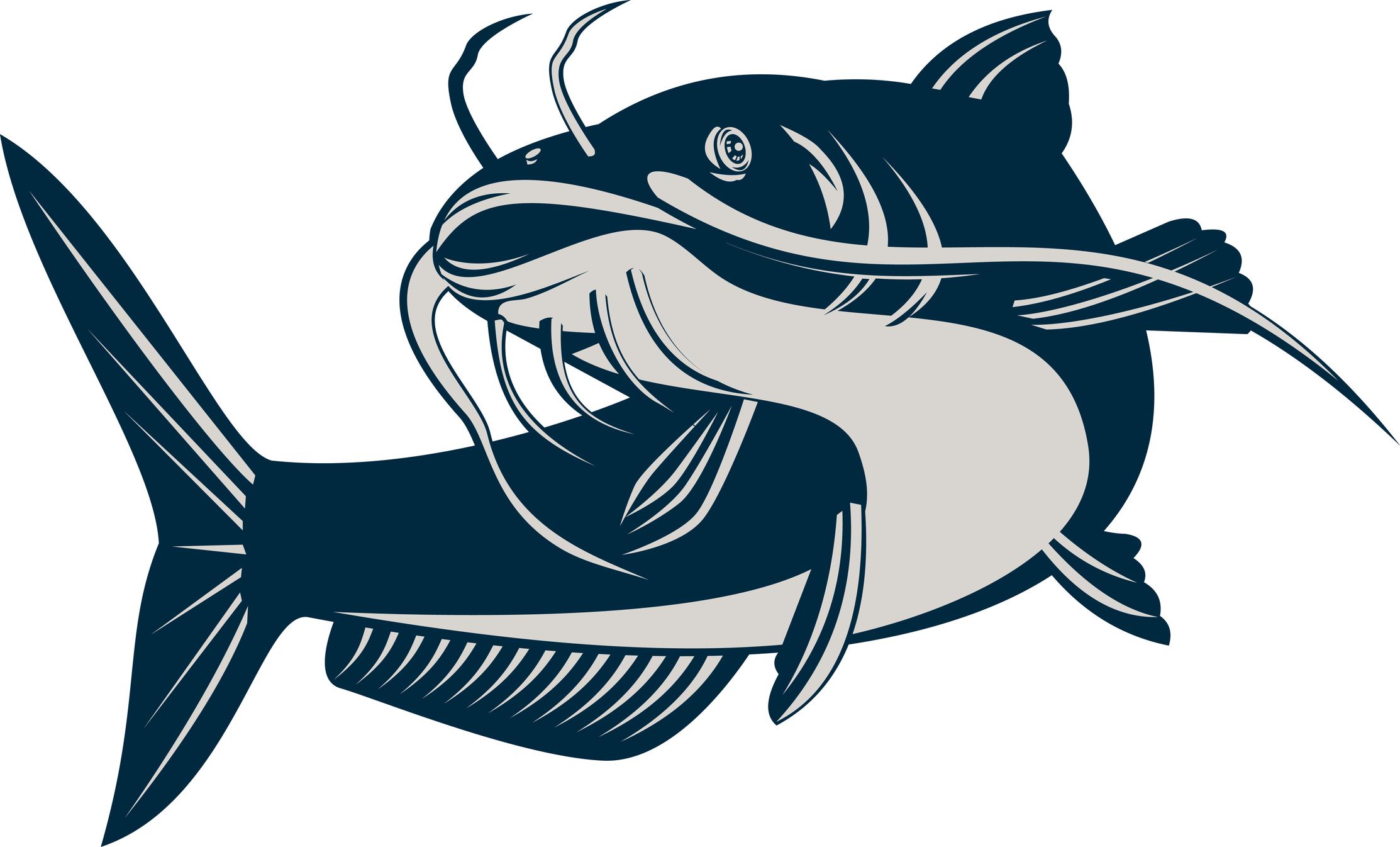 catfish svg #1072, Download drawings