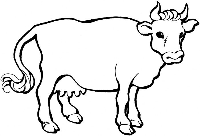 Cattle coloring #1, Download drawings