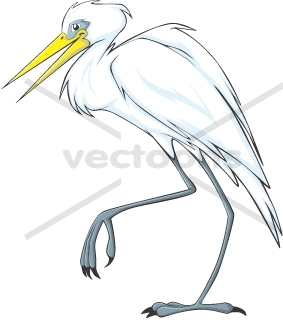 Cattle Egret clipart #15, Download drawings
