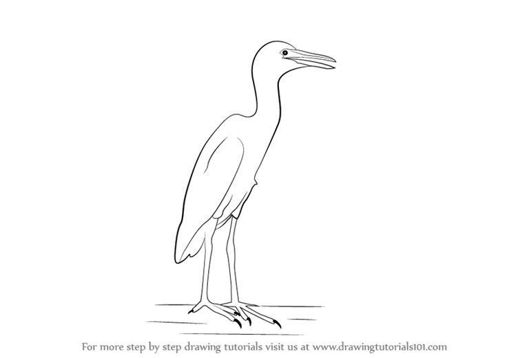 Cattle Egret clipart #2, Download drawings