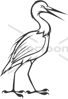Cattle Egret clipart #20, Download drawings