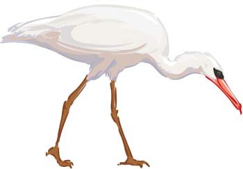 Egret clipart #12, Download drawings