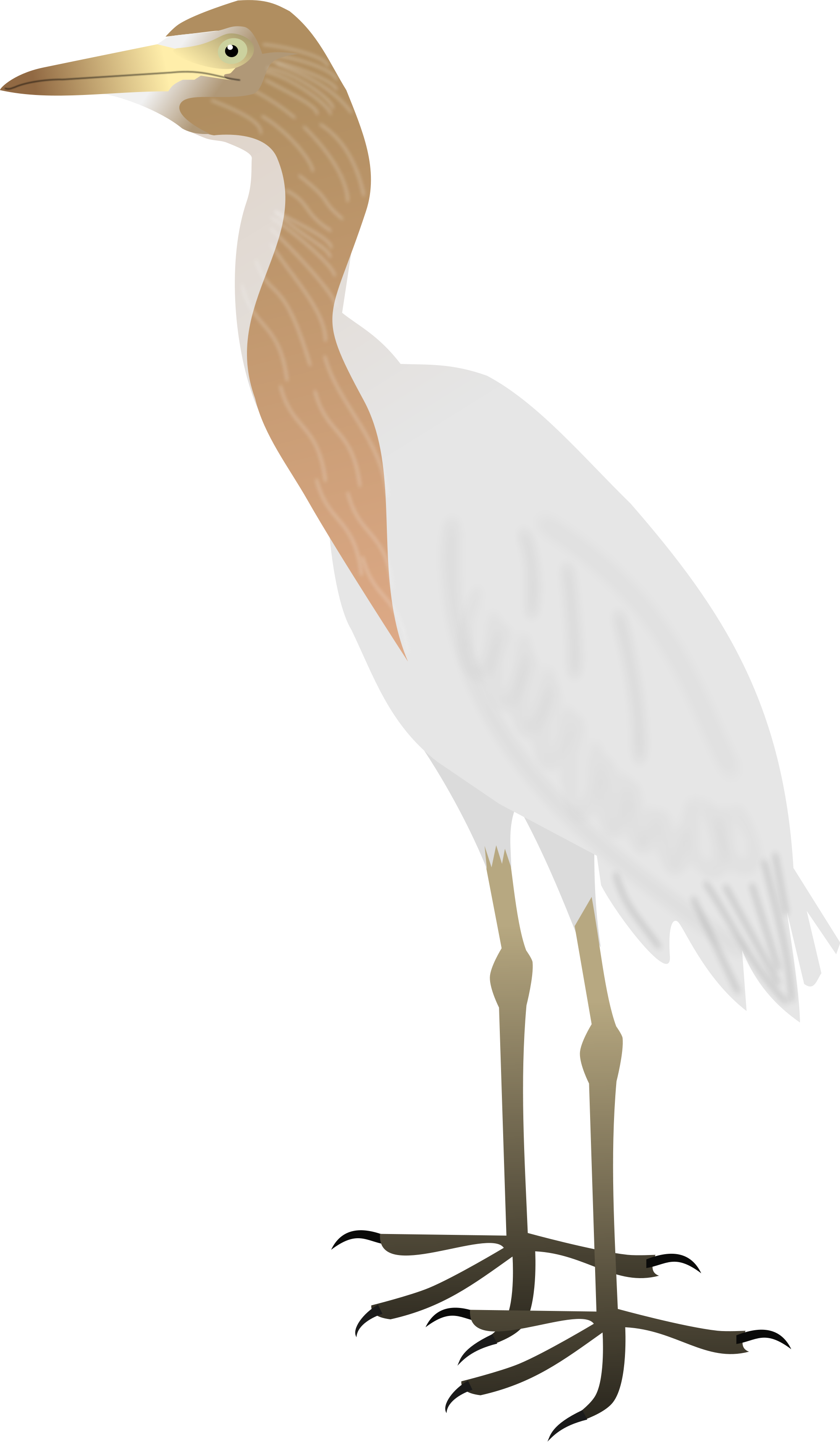 Great Egrets svg #20, Download drawings