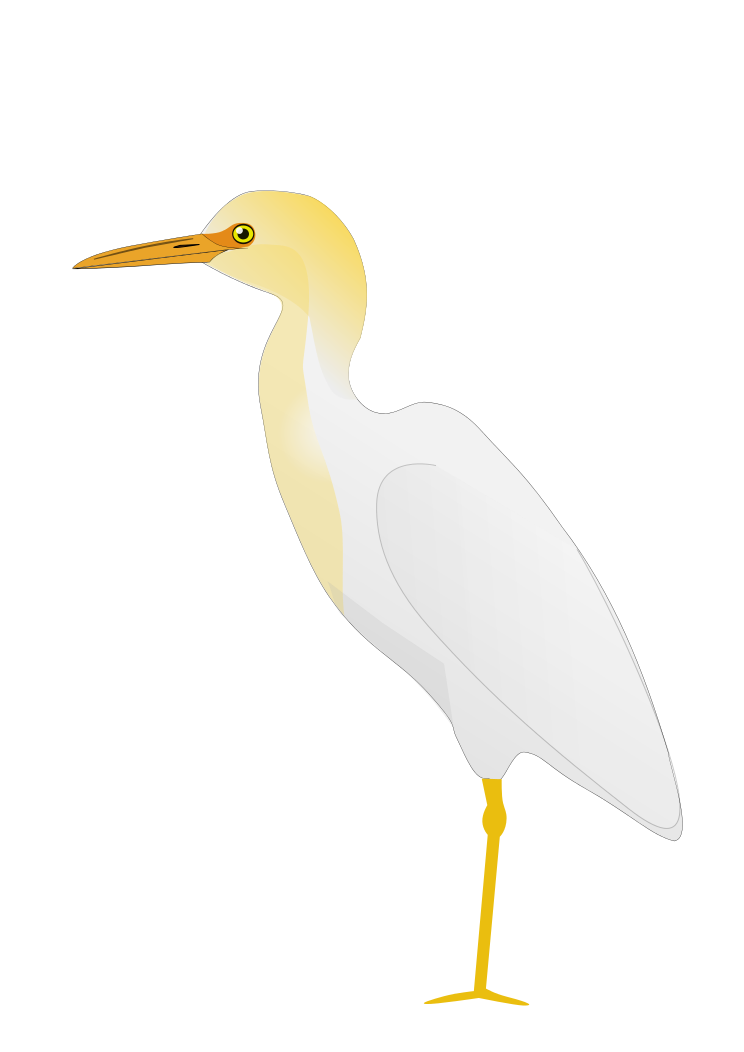 Great Egrets svg #18, Download drawings